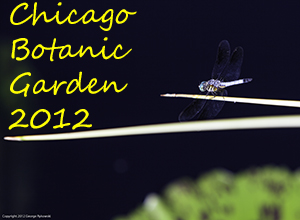 Chicago Botanic Garden 2012 Photo Slide Show