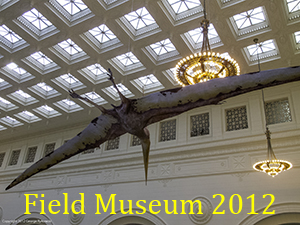 Field Museum 2012 Photo Slide Show